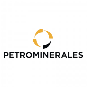 Petrominerales - Proyecto